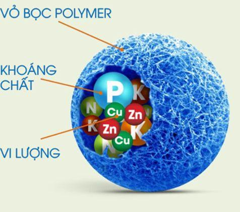 4 công nghệ mới về sản xuất phân bón ứng dụng tại Việt Nam