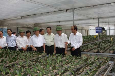 Công nghệ hạt giống của Việt Nam đang ở đâu?